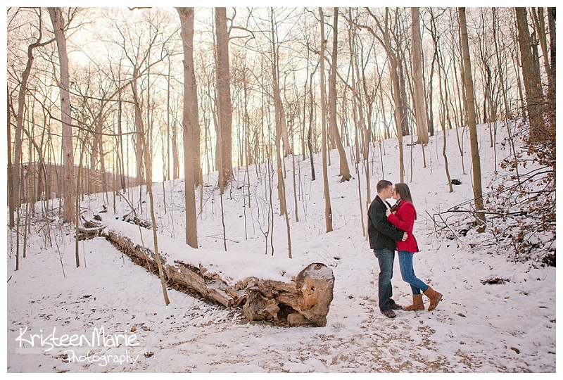 Snow Engagement Picture
