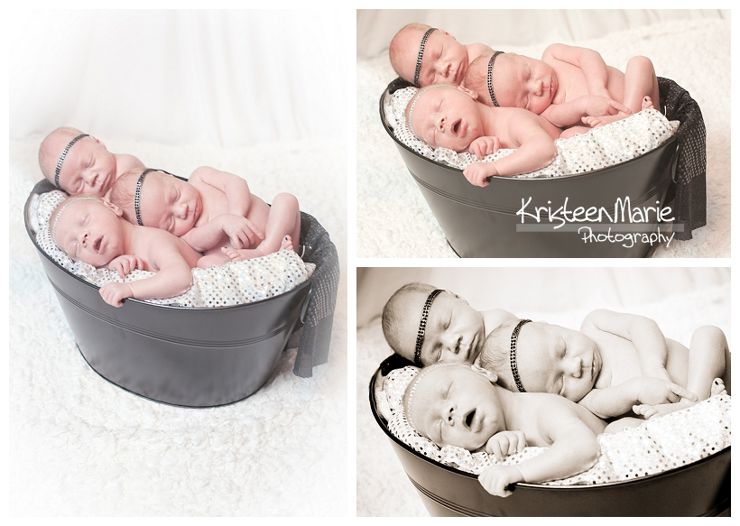 Babies in a basket