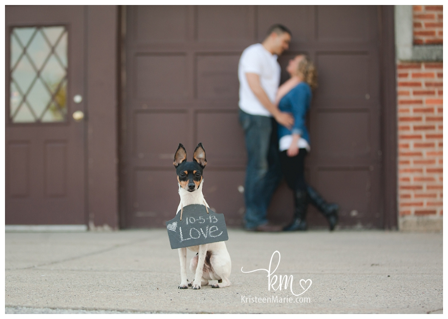 Save the date engagement picture with dog