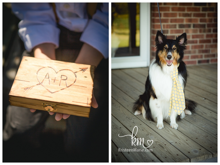 dog with tie for wedding
