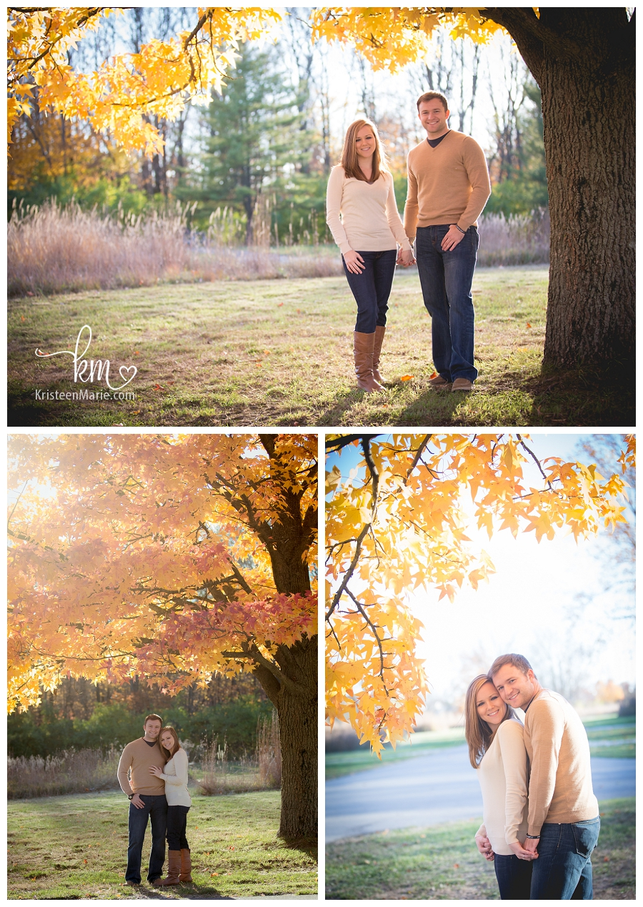 beautiful Fall leaves - engagement picture