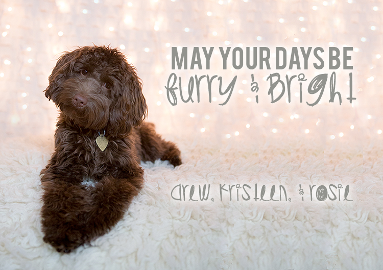 May Your Days be Furry and Bright - Christmas Card