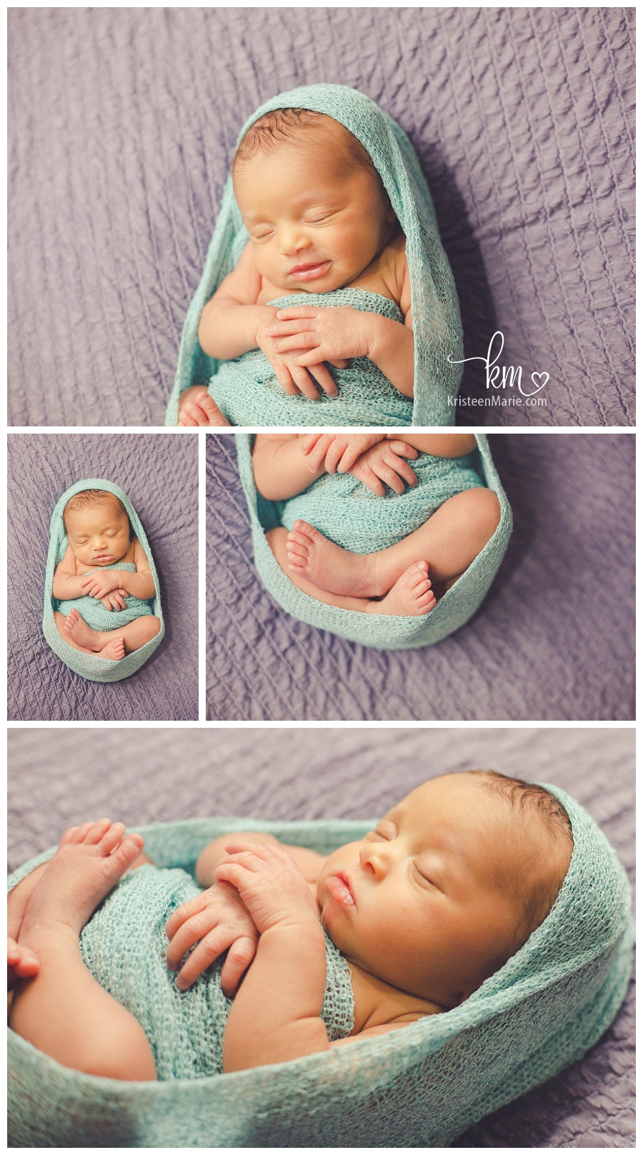 teal and purple newborn picture