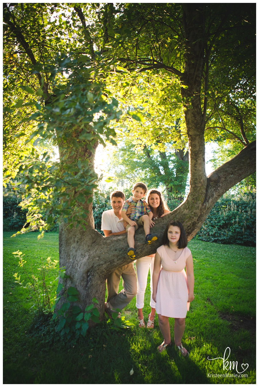 Kids in a tree - family photogrpahy