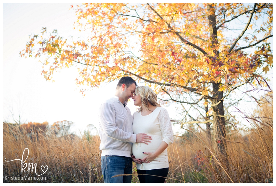 Noblesville Pregnancy Photographer