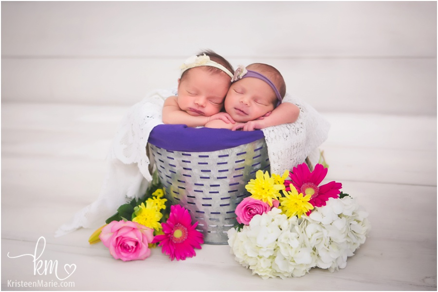 noblesville twin newborn photographer