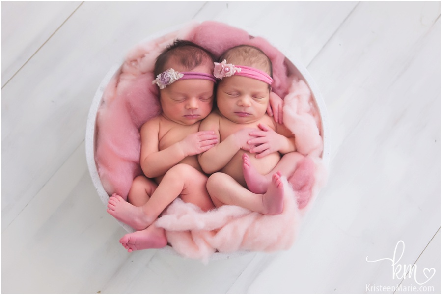 noblesville twin newborn photography