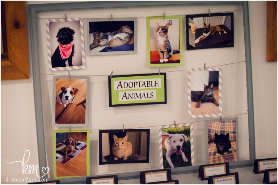 adoptable animals wedding decoration