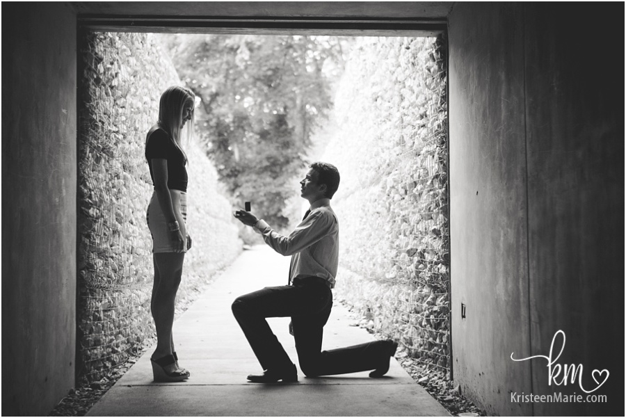 Proposal at the Indianapolis museum of art