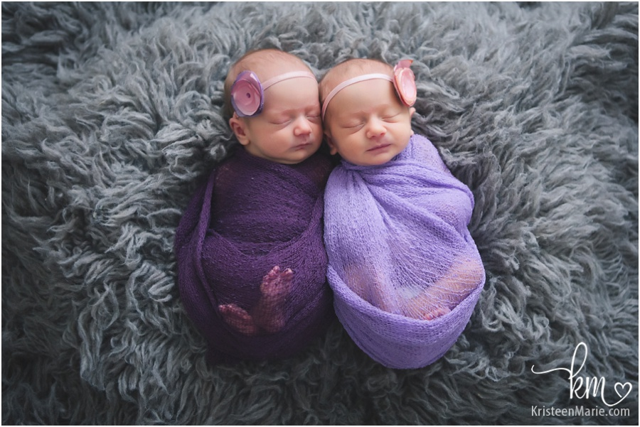 twin newborn girls in purple