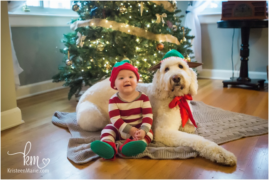 labradoodle and baby at Christmas