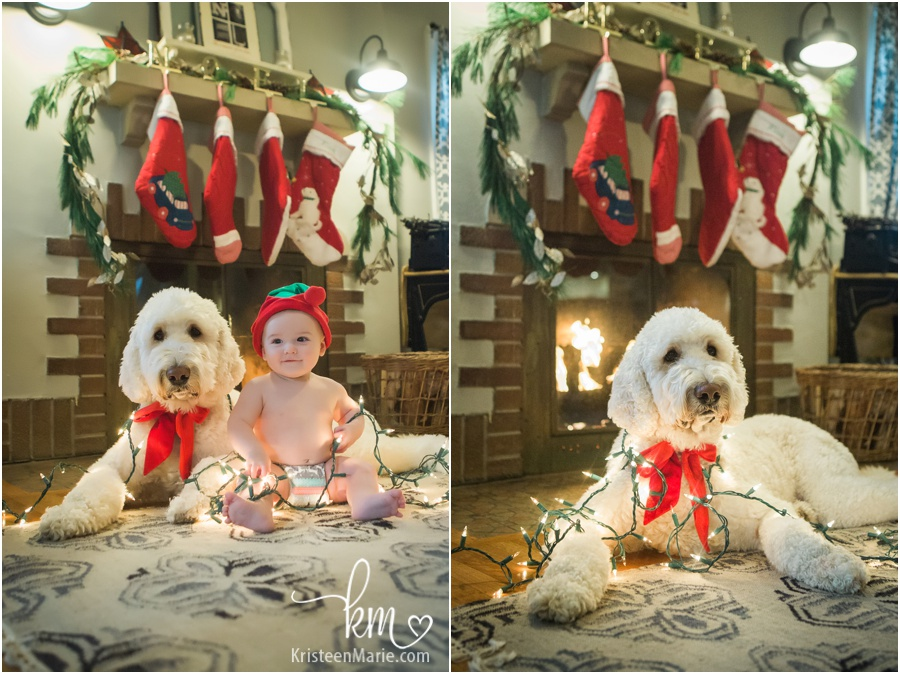 holiday lights and baby and dog