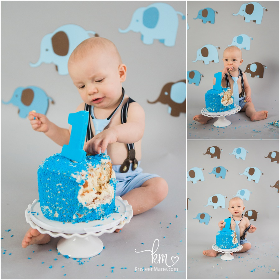 Elephant Themed 1st Birthday Cake Smash Session