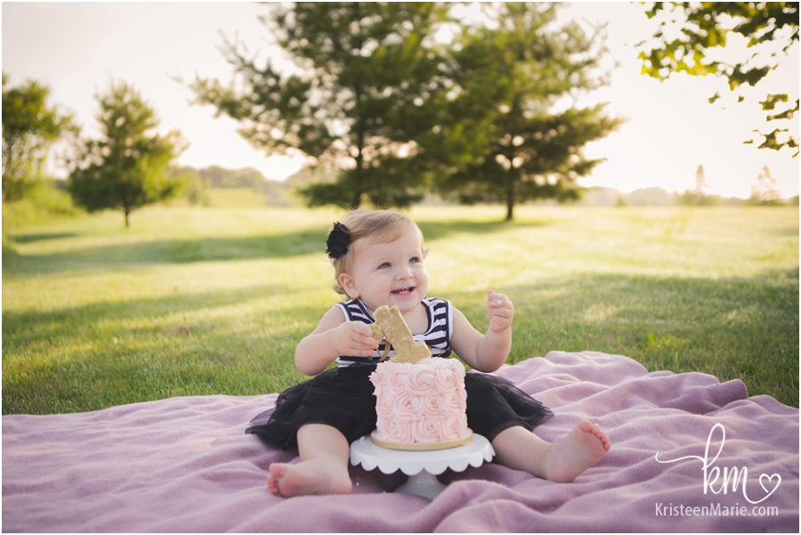 Indianapolis child 1st birthday photography - cake smash