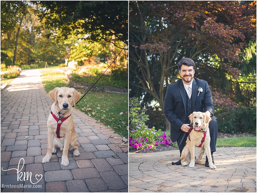 groom and pup