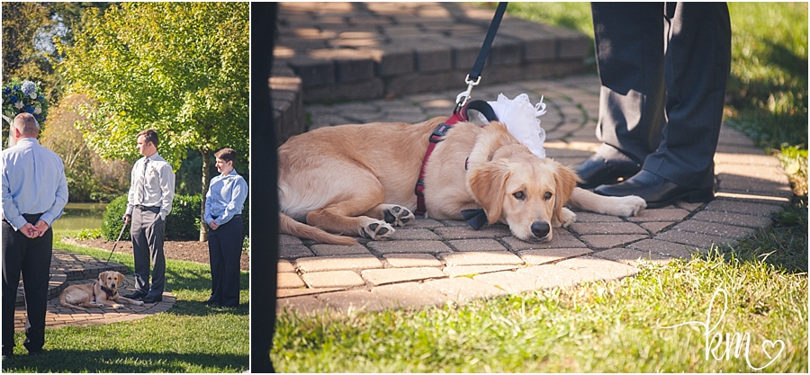 puppy at wedding ceremony