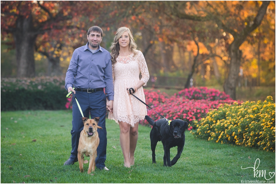 engagement picture with dogs