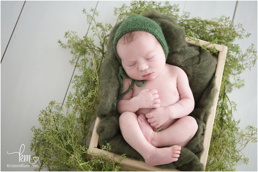 baby boy in a box with greenery