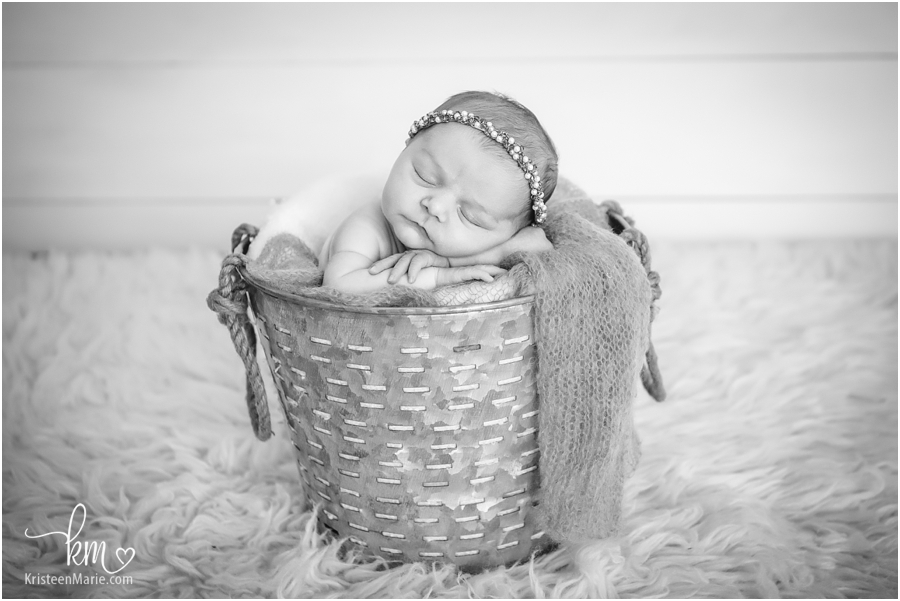 Westfiled Newborn Photographer