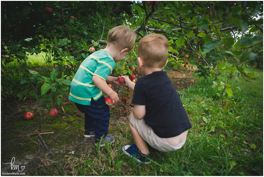 boys at the apple orchard