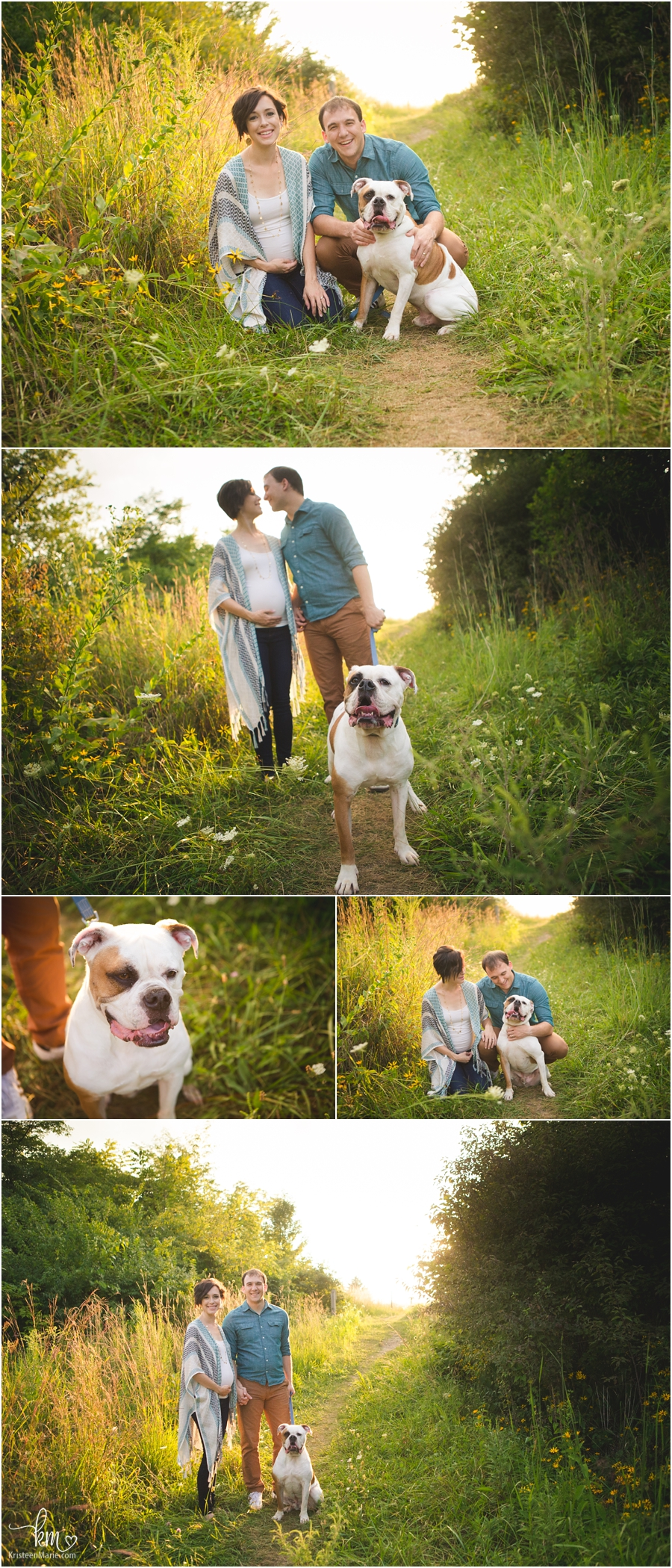sunset maternity pictures with bulldog