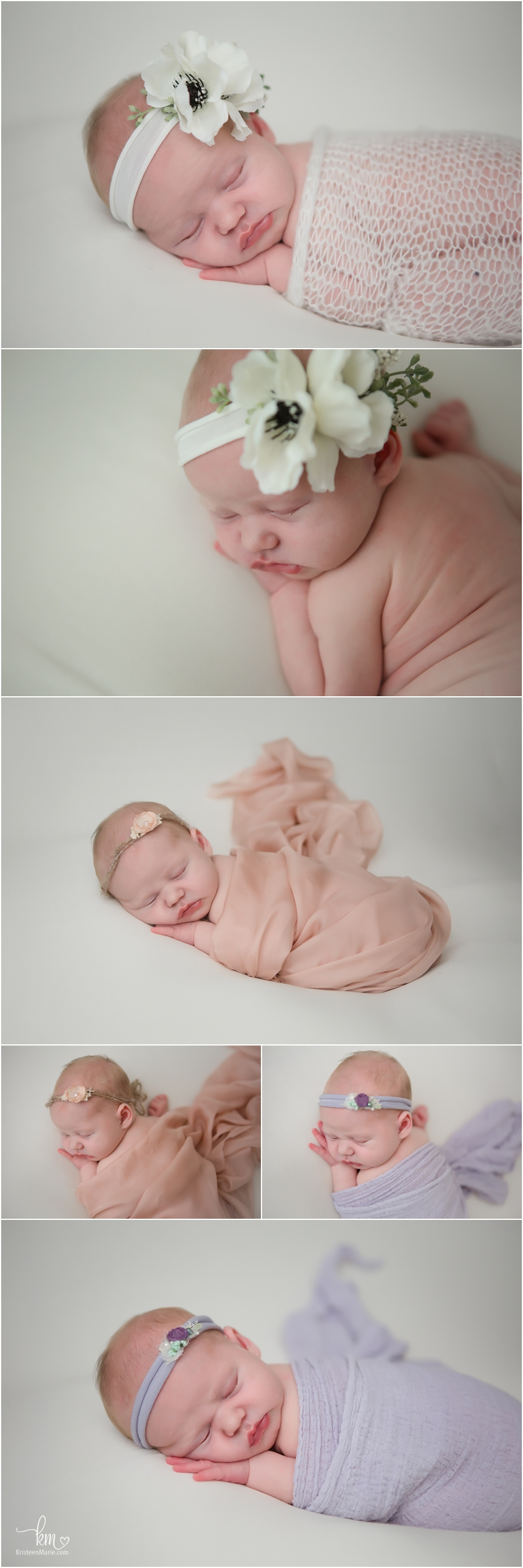newborn baby girl photographed on white
