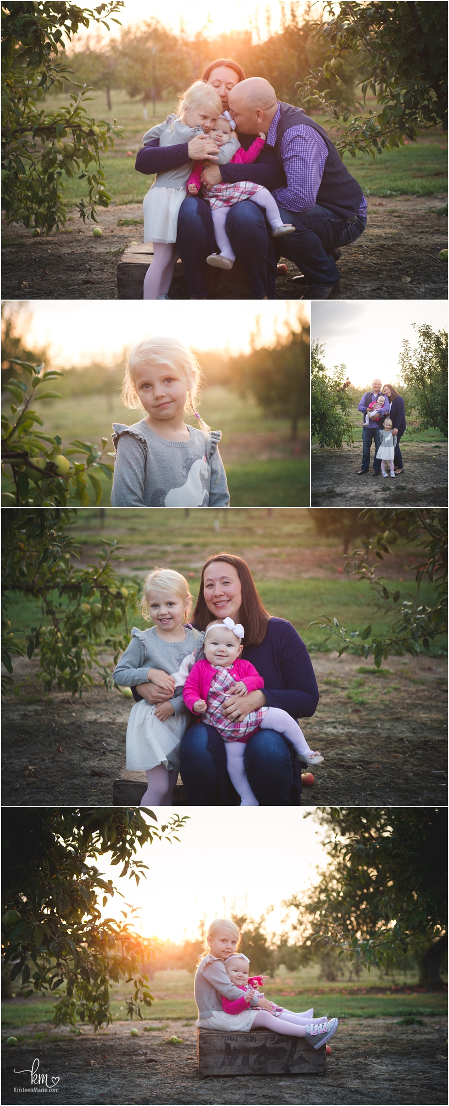 sunrise pictures at the apple orchard