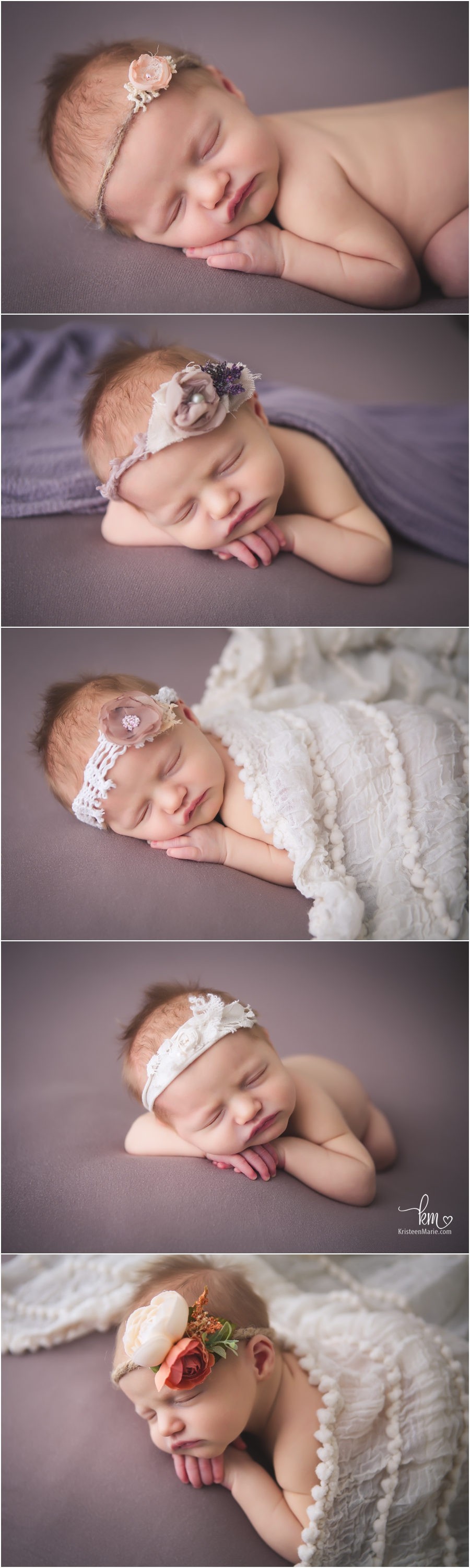 Westfield Newborn photography - baby girl in purple and cream