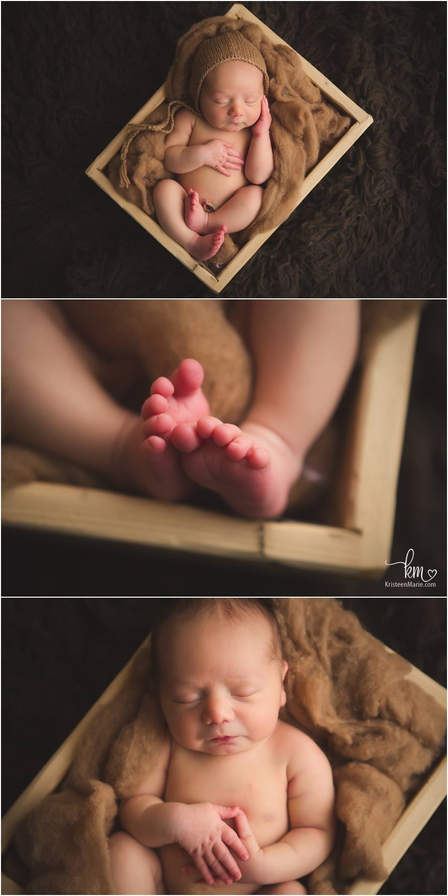 tones of brown newborn pictures