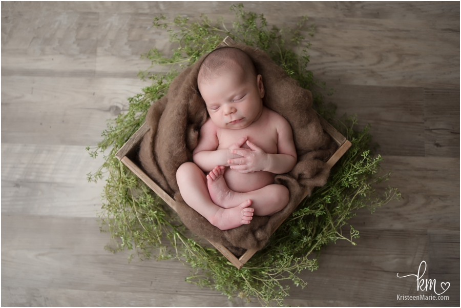 sleeping newborn boy in greenery - rustic newborn photography