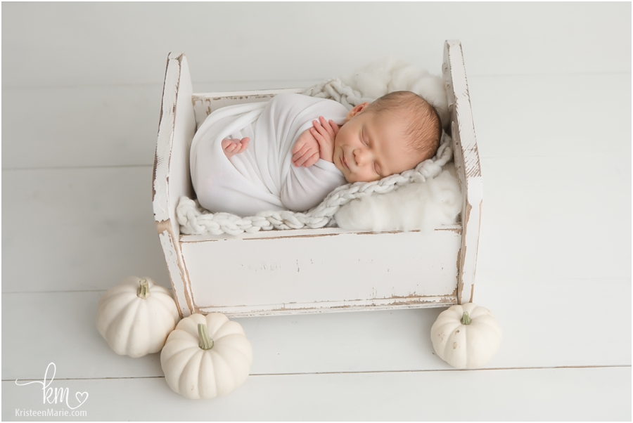 Thanksgiving newborn picture - white pumpkin