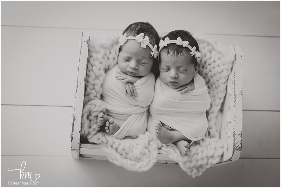 Indianapolis twin newborn photography