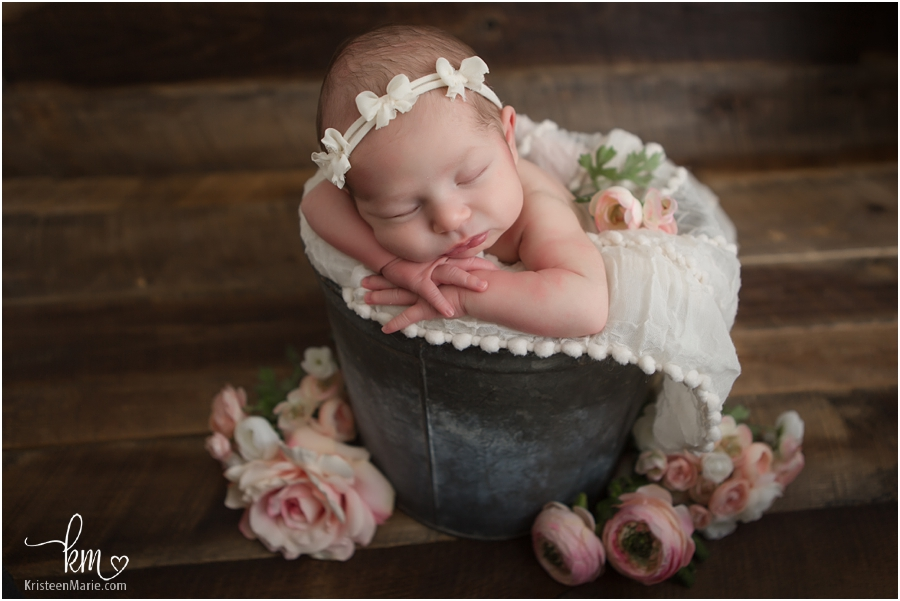 baby girl in bucket - Nobisville newborn baby