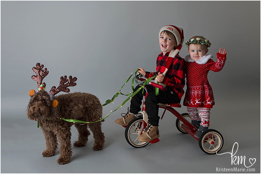 Christmas picture - toddler and baby on little red bike pulled by dog dressed as reindeer