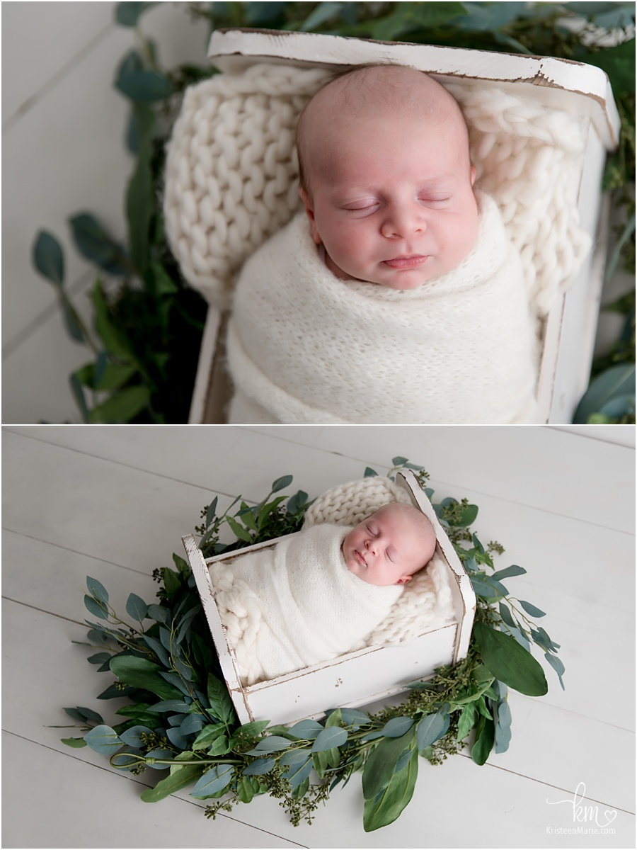 greenery boy newborn picture