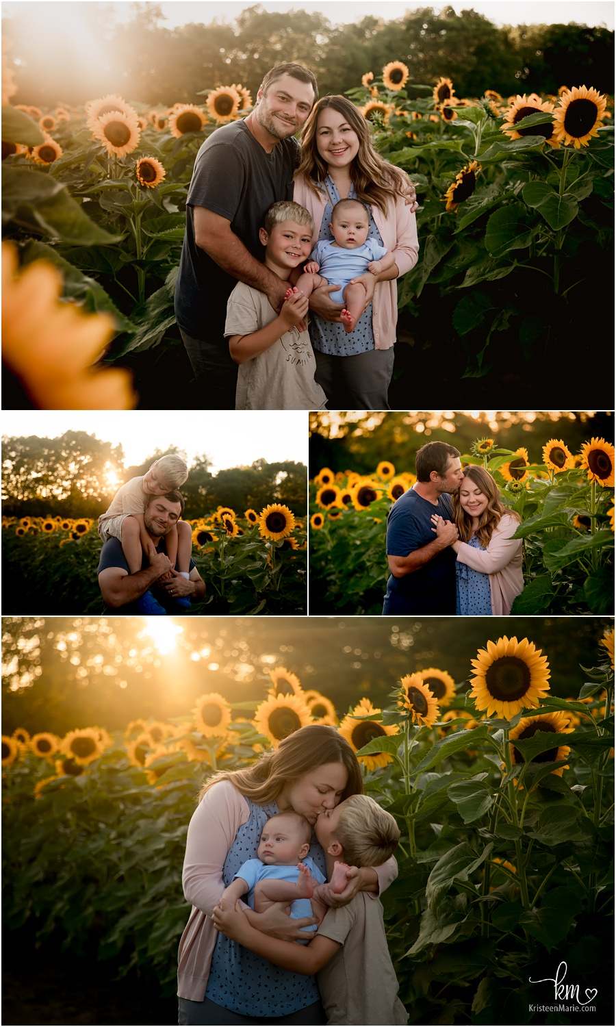 Family photography sunflower field at sunset